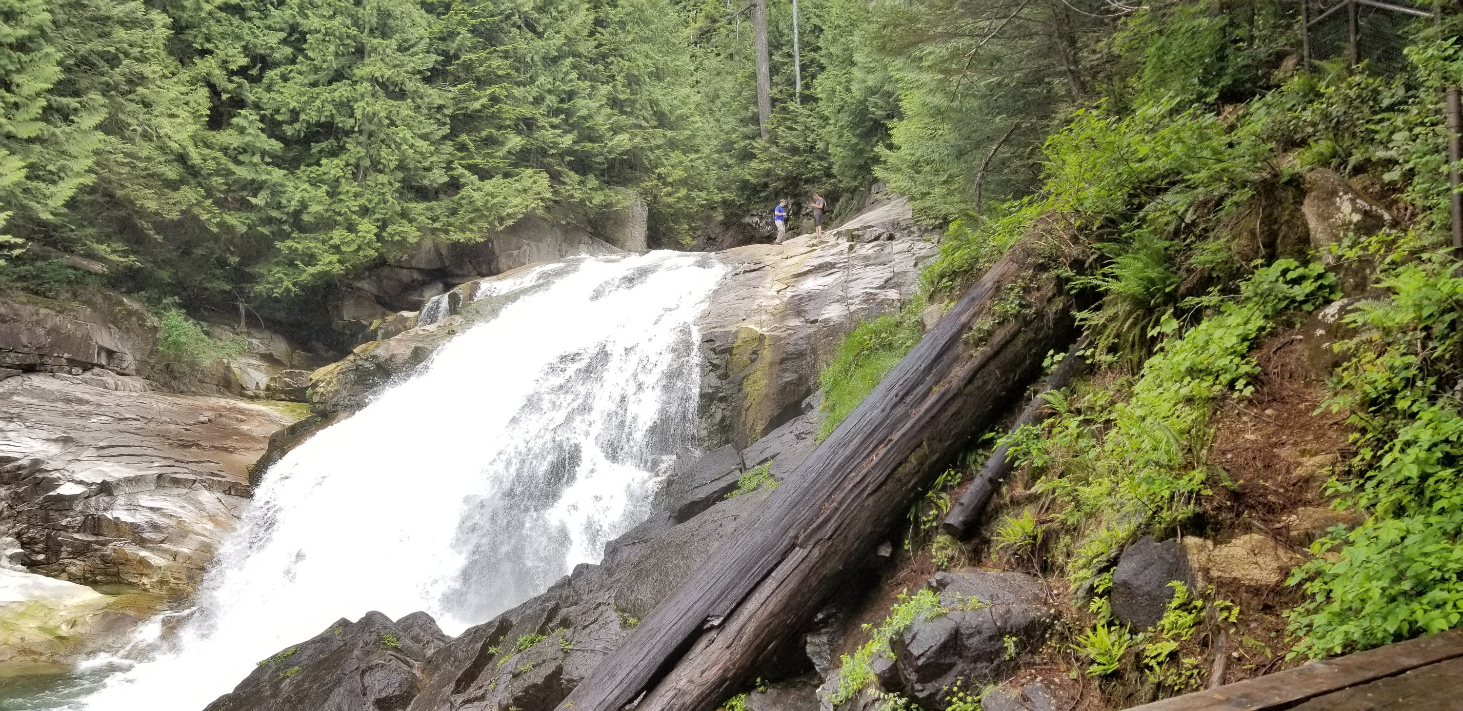 Gold Creek Lower Falls bottom lookout point